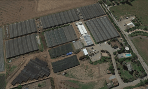 Google Earth Aerial View of Blume Distillation Campus in March 2015
